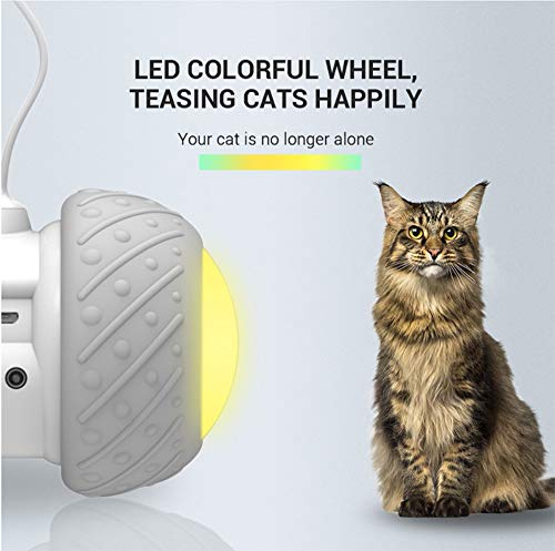 Interactive Robotic Cat Toys,Automatic Irregular USB Charging 360 Degree Self Rotating Ball,Automatic Feathers/Birds/Mouse Toys for Cats/Kitten,Build-in Spinning Led Light,Large Capacity Battery 4