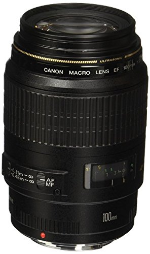 Canon EF 100mm f/2.8 Macro USM Fixed Lens