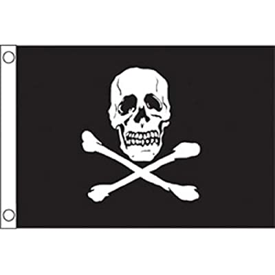 "Taylor Made Products 1818 Jolly Roger Boat Flag (12"" x 18""): Automotive"