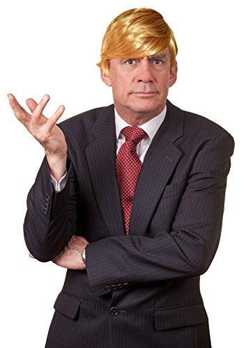 [KINREX Mens Mr. President Wig - Halloween Costume Wig - Billionaire Wig] (Halloween Costumes For The Family)