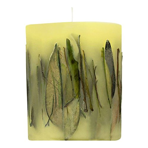 Acqua di Parma Fruit and Flower with Oolong Tea Leaves Candle 900g - Pack of 2