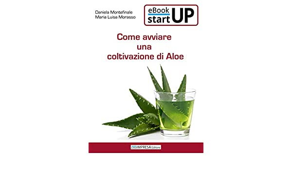 business plan coltivazione aloe