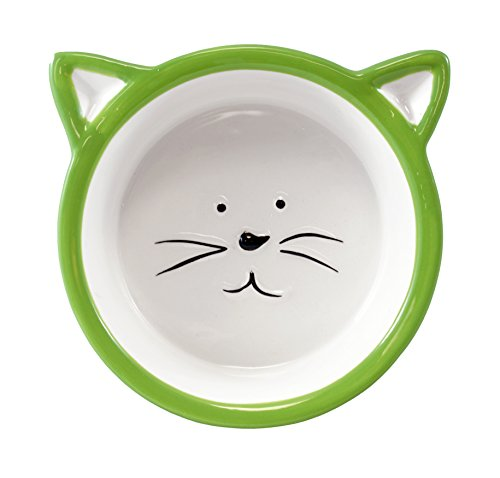 Chic Kitty Cat Face Food Bowl - Green (Cat Decorative Food)