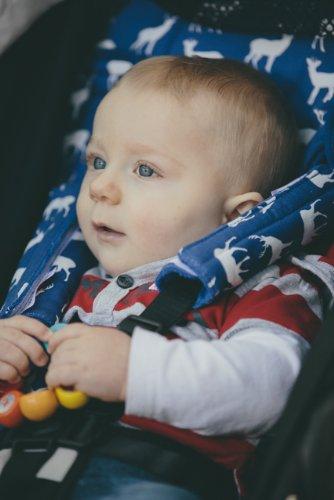 Midnight Deer Babychic Kinderwagen 100/Prozent Baumwolle Gurt//Geschirr bedeckt