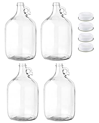 Amazon Com Home Brew Ohio Glass Water Bottle Includes 38mm Metal