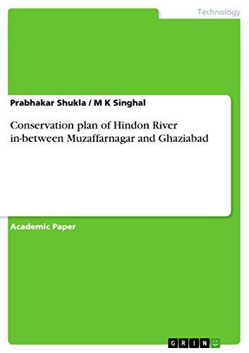 Conservation plan of Hindon River in-between Muzaffarnagar and Ghaziabad