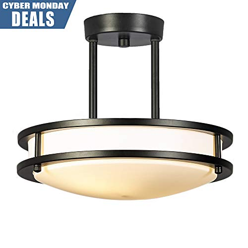 GLANZHAUS Modern Brushed Nickel Finish Flush Mount Ceiling Light, 2 Lights 11.8 Inches Ceiling Lamp for Living Room Bedroom