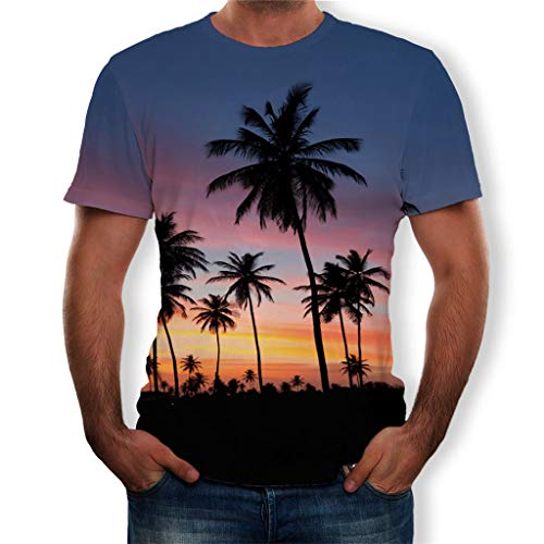FEDULK Mens 3D Print Tees Summer Holiday Beach Fashion T-Shirt Short Sleeve Loose Casual Shirts Tops Blouse(Blue, XXX-Large) ()