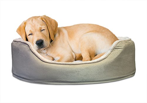 Furhaven Pet Dog Bed | Orthopedic Oval Lounger Pet Bed for D
