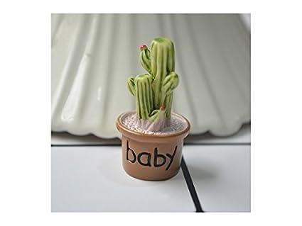 Kxrzu Estupendo Miniature Cactus Fairy Garden Micro Paisaje casa de muñecas Figurine Decor Bonsai (Baby