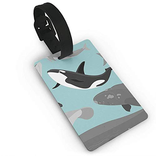 Pejer Luggage Tags Cruise-Marine Mammals In Simplified Flat Cartoon Luggage Tags Suitcase Luggage Tags Travel Accessories Baggage Name Tags Unisex