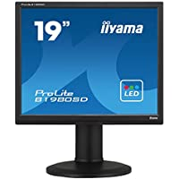 ProLite B1980SD-B1 - LED-Monitor - 48.3cm/19