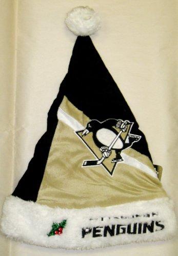 Pittsburgh Penguins Swoop Logo Santa Hat