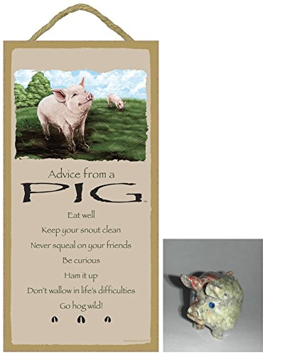 Pig Home Decor And Accessories Xpressionportal