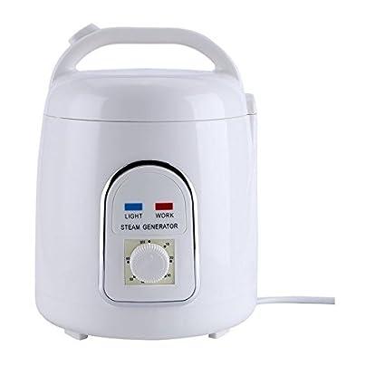 Generatore Di Vapore Per Sauna A Vapore Portable Svedana 1 5 Litri