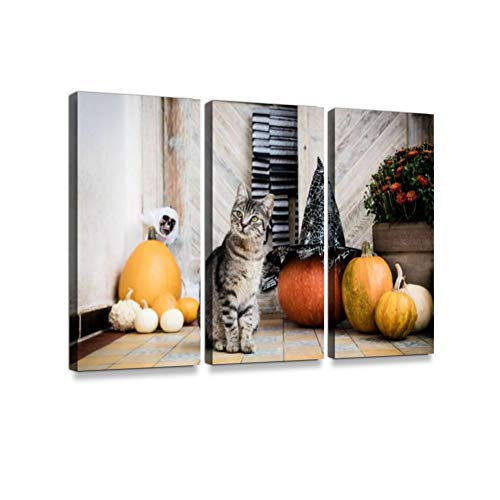 Halloween Decorated Front Door with Pumpkins. Cat on Front Porch 3 Pieces Print On Canvas Wall Artwork Modern Photography Home Decor Unique Pattern Stretched and Framed 3 Piece
