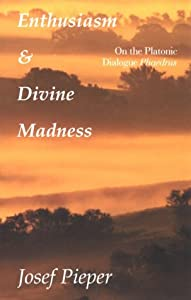 Paperback Enthusiasm and Divine Madness : On the Platonic Dialogue Phaedrus Book