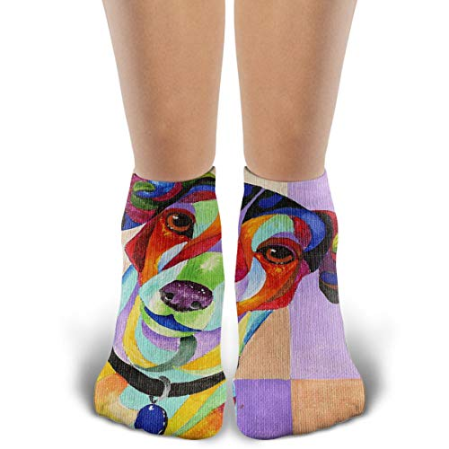 Unisex Comfort Fashion Jack-Russell-Terrier-Sherry-Shipley Hidden Athletic No Show Running Socks Cotton Ankle Sport Sock Shoe Size 6-12 for Men Women and Girls
