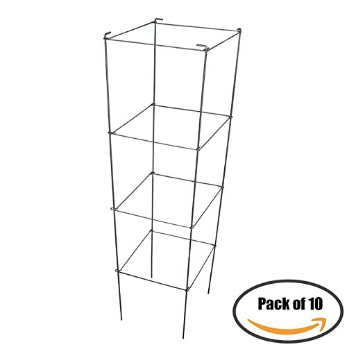 Grape Square Pot (MTB Galvanized Square Folding Tomato Cage Plant Support Tower 12 inch by 46 inch, Pack of 10 sets (Also Sold as Pack of 1 set))