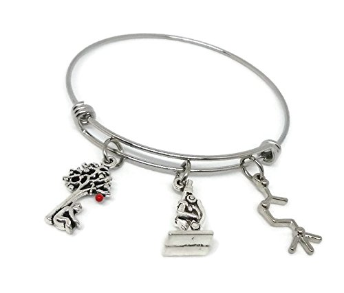 Newton's Apple Tree Stainless Steel Charm Bracelet - Isaac Newton Jewelry - Physics Gift - Science Gift Silverinestore