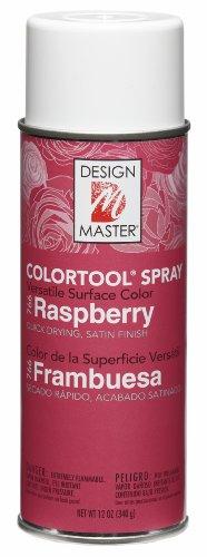 (Design Master 766 Raspberry Colortool Spray)