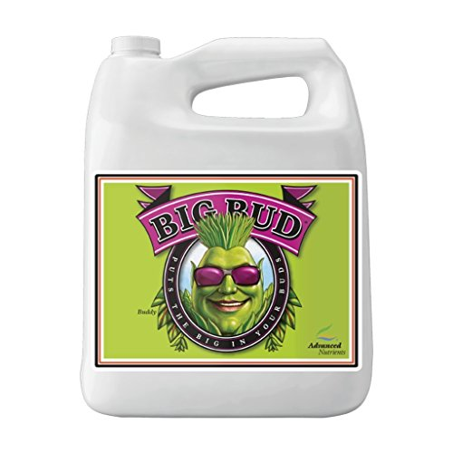 Advanced Nutrients GL525050-12 Big Bud Liquid Fertilizer, 250 mL.250 Liter Brown/A