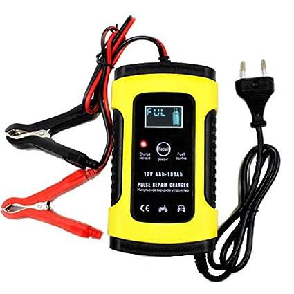 HobbyAnt FOXSUR - Cargador de batería LCD de 12 V y 5 A para ...
