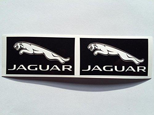 2 Jaguar White on Black 2