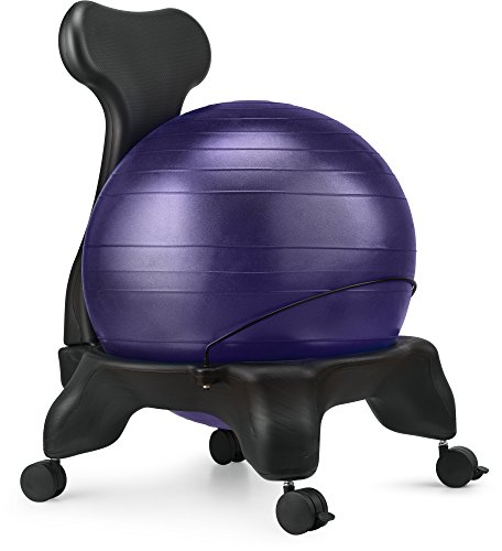 Ball Chair, LuxFit Premium Fitness Exercise Ball Chairs For Home And Office 2 Year Warranty! With 2000lbs Static Strength Ball Great Office Desk Chair, and Stability Ball Chair (Purple)