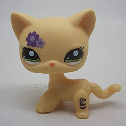 Amazon Com Rare Short Hair Cat Kitty Yellow Purple Flowers Toy