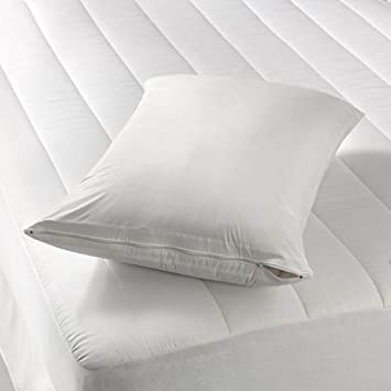 Amazon Zippered Vinyl Pillow Covers Protects Against Bed Bugs Amazing 27 Inch Pillow Covers