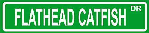 FLATHEAD CATFISH fish street sign 4