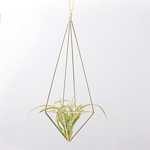 freestanding-hanging-matte-golden-quadrilateral-pyramid-teardrop-shape-geometric-flowers-tillandsia-