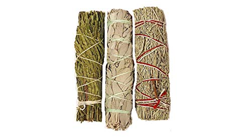 Clarity & Muse Sage Smudge Stick Kit - White Sage, Palo Santo Sticks, Cedar, Blue Sage, Abalone Shell for smudging - House Blessing Kit