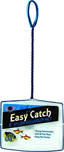 (Blue Ribbon Pet Products ABLEC8 Easy Catch Fish Net for Aquarium, 8-Inch)