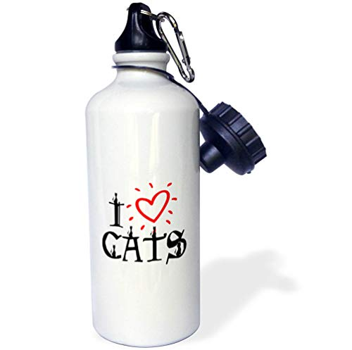 3dRose Alexis Design - Animals Cats - Funny red Heart Decorative Text I Love Cats. Cats sit on Letters - Flip Straw 21oz Water Bottle (wb_313511_2)