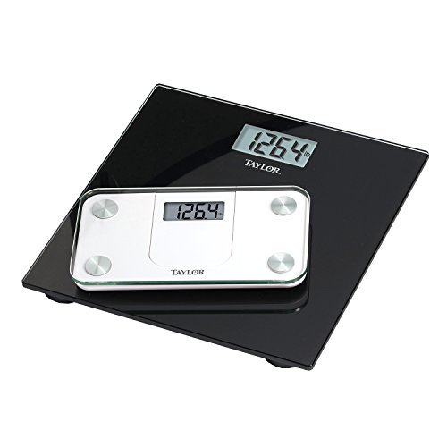 Taylor Glass Mini Scale Expandable