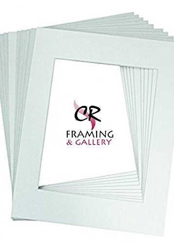 CR Framing, Pack Of White 25 Acid-Free White Pre-Cut 4 X 6'' Picture Mats Matting for 2 1/2 X 3 1/2 Photo Bevel Cut
