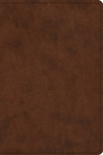 ESV Study Bible, Personal Size (TruTone, Brown) from Crossway Books