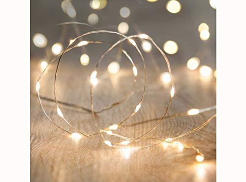 Firefly Led String Lights in US - 7