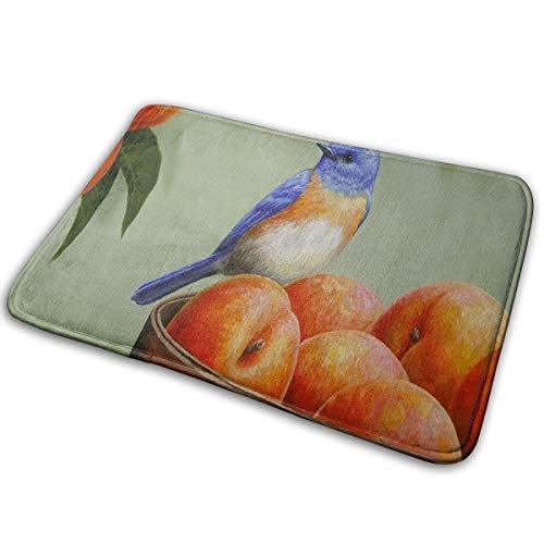 - LFTRIS Blue Bird and Peaches Door Mat Personalized Shower Home Interior Exterior Floor Rug Coral Velvet