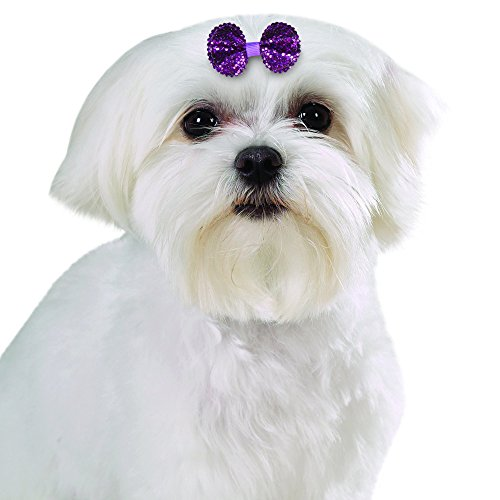 Aria Sequin Bows for Dogs, 100-Piece Canisters by Aria (Image #2)