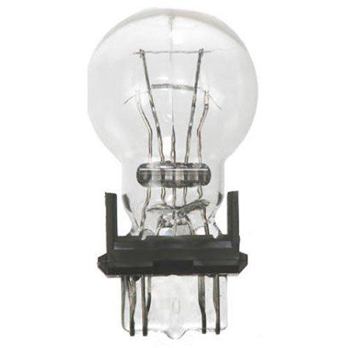 Lacrosse Note Card - Wagner Lighting BP7440 Miniature Bulb - Card of 1