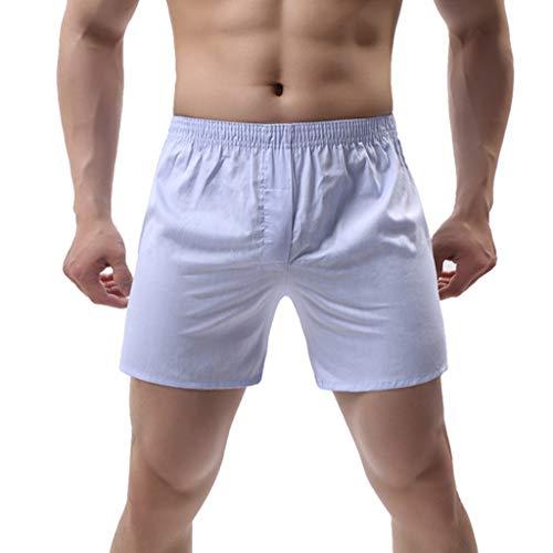 Men's Premium Underwear Relaxed Fit Loose Boxer Briefs Tagless Long Leg Shorts Underpants (XL, Sky Blue)