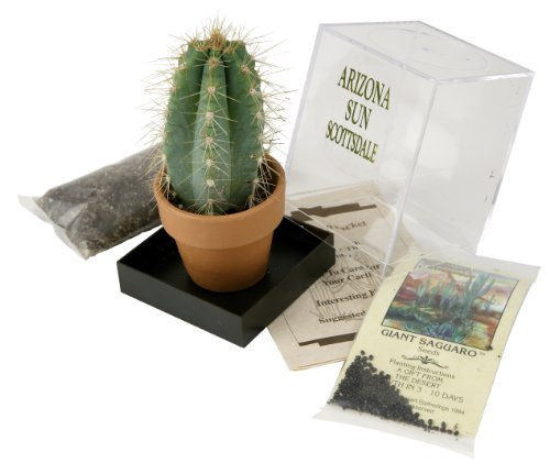 Grow your own Saguaro Cactus Kit - Incubator - Cactus Seeds - Southwest Arizona Southwestern Gift Idea - Seed Propagation - Desert Souvenir ()