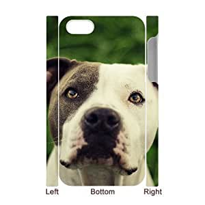 3D Bumper Plastic Case Of Pit Bull Terrier customized case For Iphone 4/4s hjbrhga1544