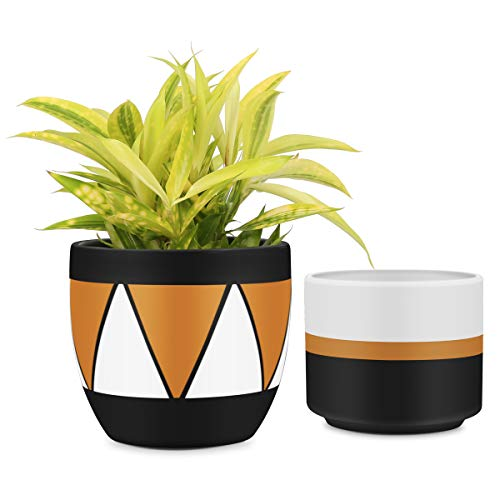 - Matte White & Black Ceramic Flower Pot 6 inch Set of 2 Indoor Planters with Drainage Hole Gold Detailing