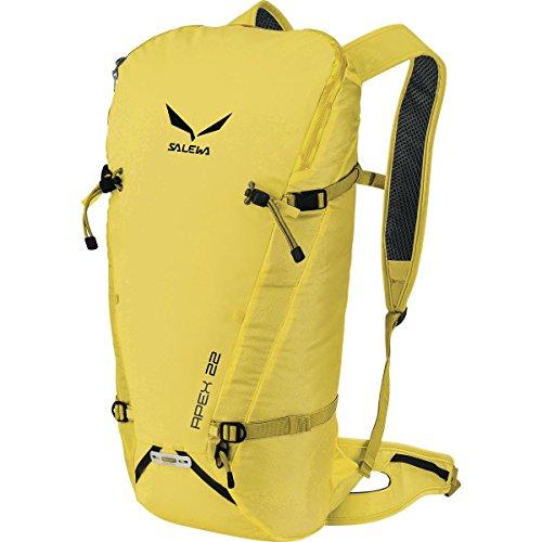 Salewa Apex 22L Backpack Kamille, One Size