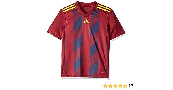 Amazon.com : adidas Boys' Striped19 Youth Soccer Jersey : Sports ...