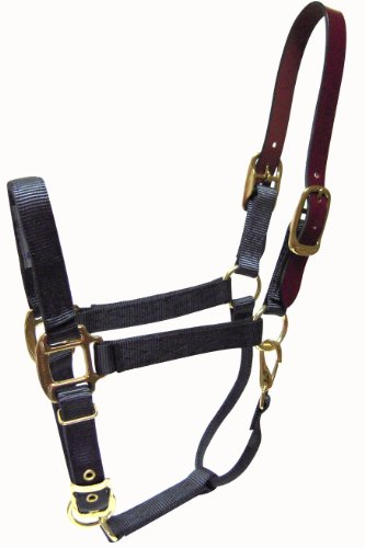 (Hamilton 1-Inch Nylon Adjustable Horse Halter with Leather headpoll and Throat Snap, Average size 800 to 1100-Pound,)